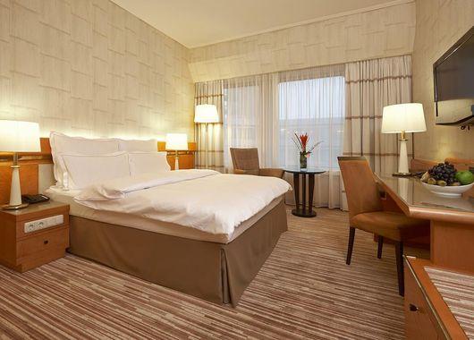 imagen del hotel Hotel Nikko